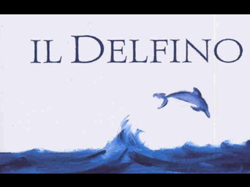delfino_1