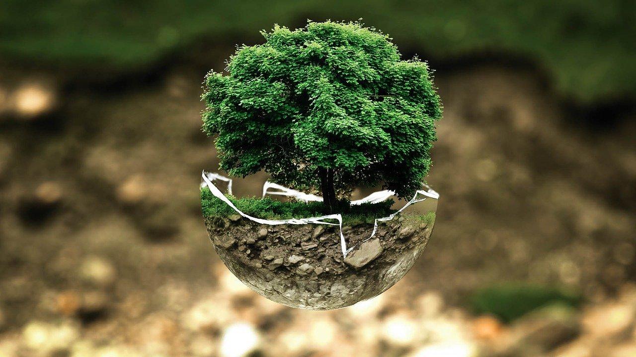 uomo e ambiente