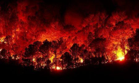 australia_incendi