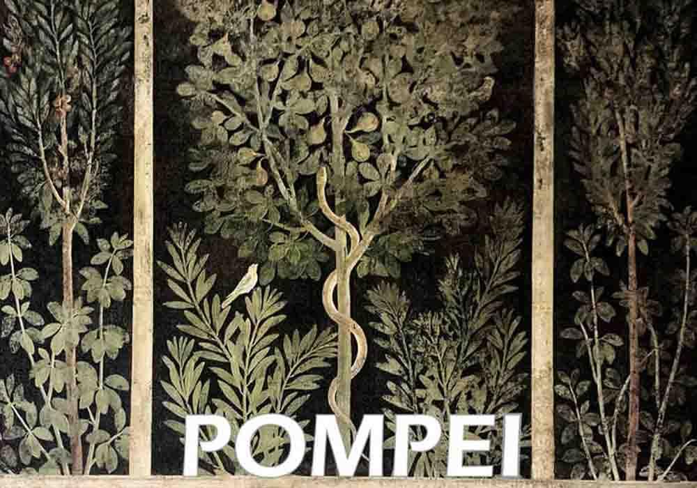 pompei-domus